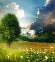 Фото природы Основная картинка